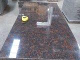 Parti superiori/controsoffitti verdi di vanità della cucina/stanza da bagno del granito di Verde Ubatuba