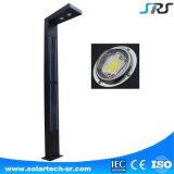 IP66 impermeabilizan altas luces solares del jardín de la alta calidad LED del lumen con la certificación del Ce