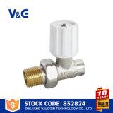 Válvula do radiador de aquecimento de água solares reta (VG-K16021)