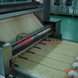 Ligne de production de nouilles instantanées non frites Tn