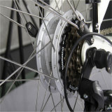 26inch Best Quality Electric Bike (rseb-302)