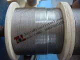 Taizhou 시 장쑤성 중국에서 스테인리스 철사 밧줄