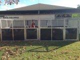HDPE de Stal van het Paard van de Deur van de Schommeling van de Kwaliteit met Dak (XMS142)