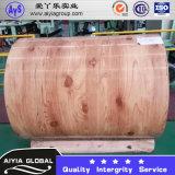 PPGI Prepainted galvanizado de aço bobina) (de PPGI/PPGL/Steel/SGCC/Roofing revestido cor de aço