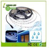 RGBW IP65 impermeabilizzano il colore che cambia SMD 5050 2835 indicatore luminoso di striscia flessibile di 12V 220-240V LED con il regolatore a distanza