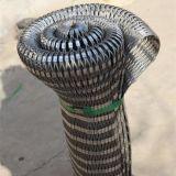 Ячеистая сеть веревочки нержавеющей стали/декоративная сетка веревочки/сплетенная ячеистая сеть