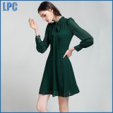 Translucent Sexy Turtleneck Leisure Dress for Women