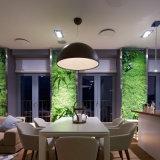 Reproducción que enciende la lámpara pendiente del proyecto decorativo de interior moderno