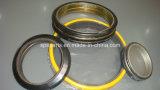 Selo de óleo / vedação do eixo / vedação mecânica / anel de deriva