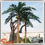 Ome卸し売り屋外の人工のつけられた王ココヤシの木の木
