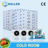 Kleinkapazitätskühler-Raum/Weg in der Gefriermaschine für Fische/Gemüse/Früchte