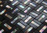 Frischwassershell und schwarzes Marmorierungmosaik