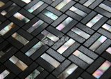Shell de agua dulce y mármol negro Mosaico