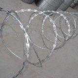 機密保護の壁のスパイクの/Fenceの鋼鉄スパイクに反上りなさい