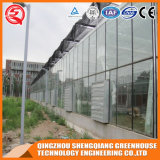Agricultuer гальванизировало дом Venlo стальной рамки стеклянную зеленую