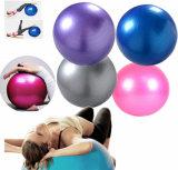 De Bal van de oefening voor de Training van het Saldo van Pilates van de Geschiktheid van de Yoga