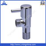 Угловой вентиль трубопровода высокого качества Polished латунный (YD-5026)