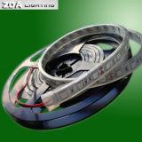 Lumière de corde de DC12V/24V SMD5050 DEL