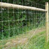 Cerca galvanizada de alta elasticidade da exploração agrícola de gado da junção de dobradiça para a pastagem