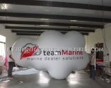 Bekanntmachen von Giant Inflatable Helium Balloon/Advertizing Balloon für Sale, Cloud Helium Balloon mit LED Lighting