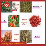 Máquina de secagem de ar quente de produtos hortícolas Frutas Garrafa