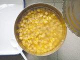Les conserves de maïs sucré 2500g