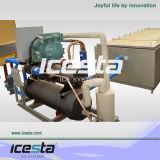 Штаты Америки Copeland компрессор CE сертификации блок льда