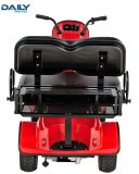 Cer-starke Energien-Minianblick, der Karre mit 36V 1600W Motor Dm800XL sieht
