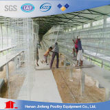 Heißer Verkauf im Afrika-Batterie-Geflügel-Huhn-Rahmen für Geflügelfarm