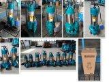 Abwasser-Wasser-Pumpe, versenkbare Wasser-Pumpe für schmutziges Wasser