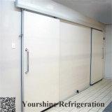 Nocken-Verschluss-Qualitäts-Kühlraum-Panel für Speicherung des Gemüses und der Früchte