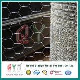 金網の電流を通されたウサギの鉄ワイヤー六角形の金網