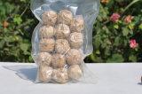 Esportazione nera superiore professionale dell'aglio