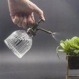 Jardim vidro decorativo garrafa spray de água pequenas Regador