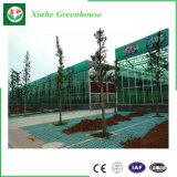 Estufa de vidro popular para agricultural usado
