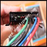 Controlador 10 20 solar Cis de Phocos para a luz de rua solar