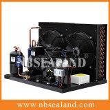 Unidad de condensación de alta potencia para la cámara fría