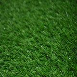 Дерновина искусственной травы внимательности любимчиков синтетическая (MB)