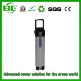 Batterij van de Fiets van de Stijl van het Rek van de Batterij van Ebike de Achter36V 10ah Elektrische