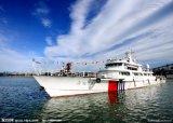 Melhor agente de frete marítimo / marítimo da China para a Cidade do Panamá