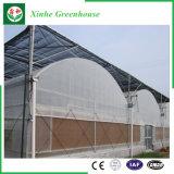 Os Sistemas de Controle Automático Multi-Span Vidro Agricultura Venlo Emissões