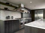Мебель кухни просто конструкции неофициальных советников президента прокатанная деревянная