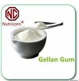 도매 음식 급료 Gellan 실리콘껌 분말/71010-52-1/낮은 /Highacyl