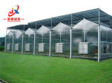 Vegetal que planta a estufa de vidro inteligente