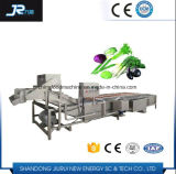 マンゴのための処理の生産の洗濯機
