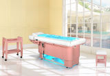 High-End multifunctionele luxe elektrische SPA Massage Table Beauty Salon Meubilair Gezichtsbed (D-170101)