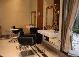 High End Salon Beauty Styling Chair haarsnijstoel