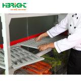 De in het groot Commerciële Hangende Sporen van de Koude Zaal voor Modulair en Commerical Refridgeration