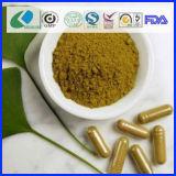 BiokostGinkgo Biloba Blatt-Kapsel für die Verringerung des Blut-Fettes