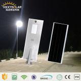 100W庭の太陽LED Enegryの動きセンサーの街灯